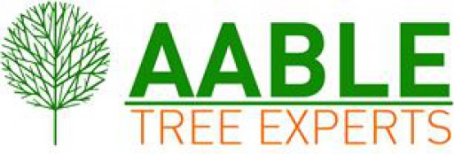 Aable Tree Experts