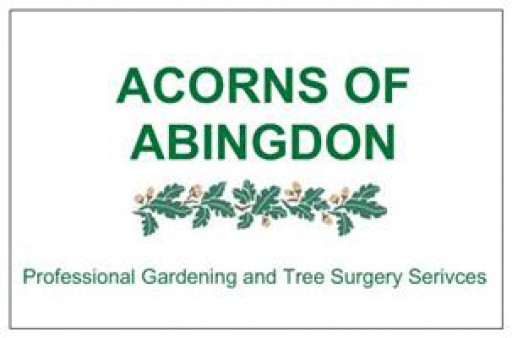 Acorns Of Abingdon