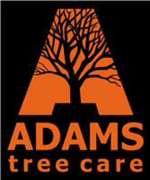 Adams Tree Care