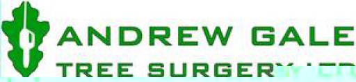 Andrew Gale Tree Surgery Ltd