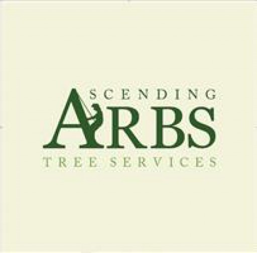 Ascending Arbs Tree Services Ltd