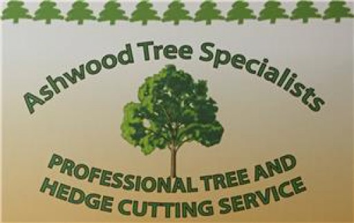 Ashwood Tree Specialist