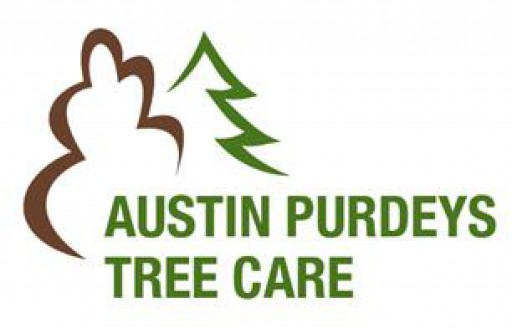 Austin Purdeys Tree Care