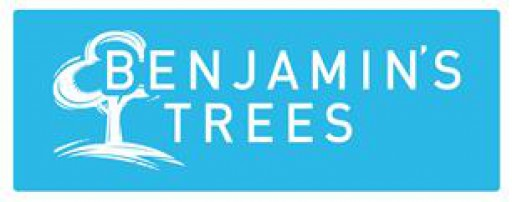 Benjamin's Tree's Ltd