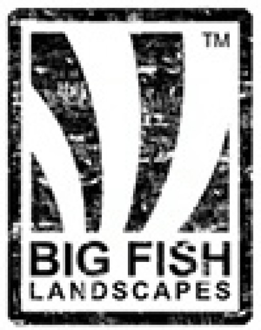 Big Fish Landscapes Ltd