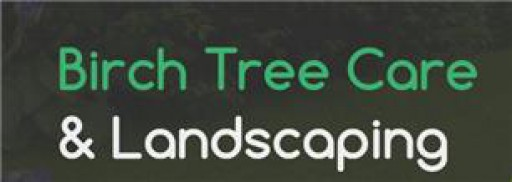 Birch Tree Care & Landscaping