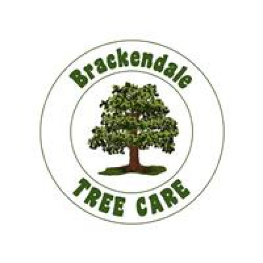 Brackendale Tree Care Ltd
