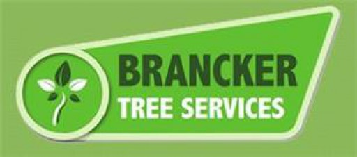 Brancker Tree Services