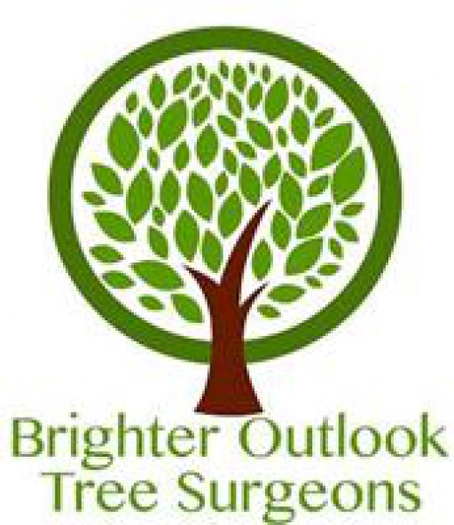 Brighter Outlook Tree Surgeons