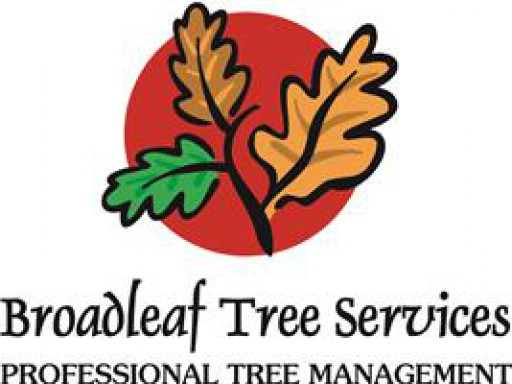 Broadleaf Tree Services