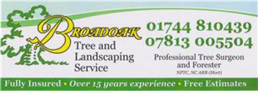 Broadoak Tree & Landscaping