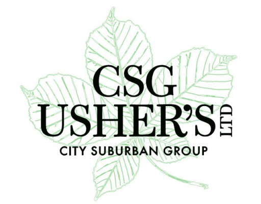 CSG (Usher's) Limited