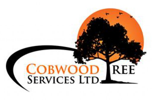 Cobwood Tree Services Ltd