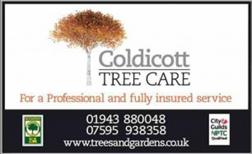 Coldicott Tree Care
