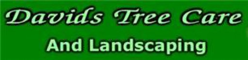 David's Tree Care & Landscape
