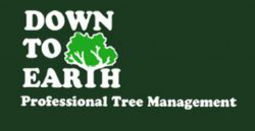 Down To Earth Trees Limited
