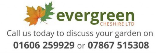 Evergreen Cheshire Ltd
