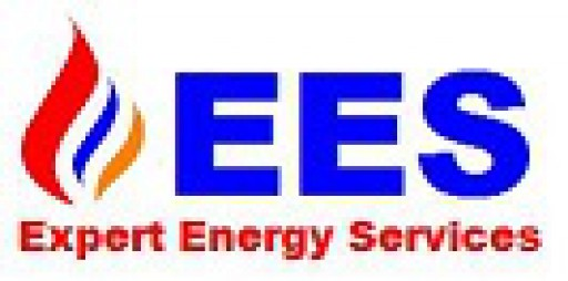 Expert Energy Services Ltd