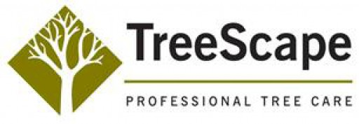 Hampshire Treescape Ltd