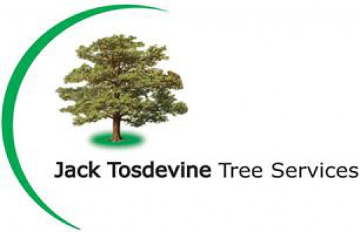 Jack Tosdevine Tree Services