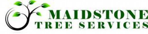 Maidstone Tree Services