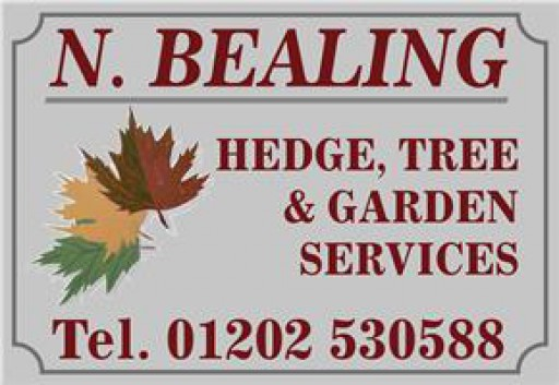 N Bealing Hedge, Tree & Garden Services