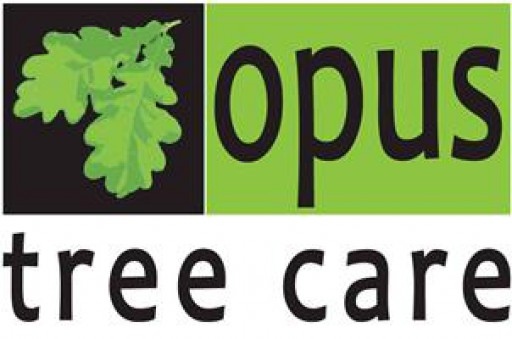 Opus Tree Care