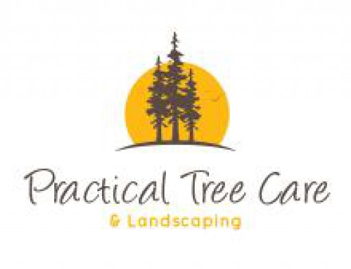 Practical Tree Care