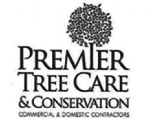 Premier Tree Care and Conservation