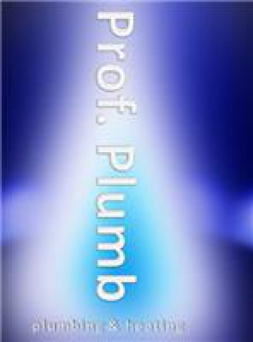 Professor Plumb Ltd