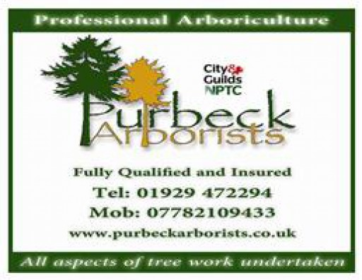 Purbeck Arborists
