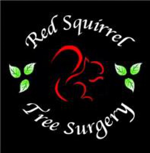 Red Squirrel Tree Surgery