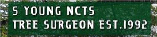 S Young NCTS Tree Surgeon