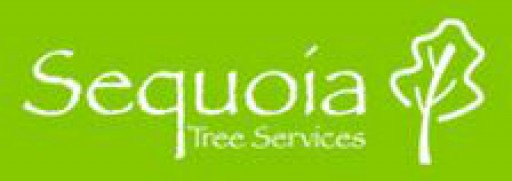 Sequoia Tree Services Ltd
