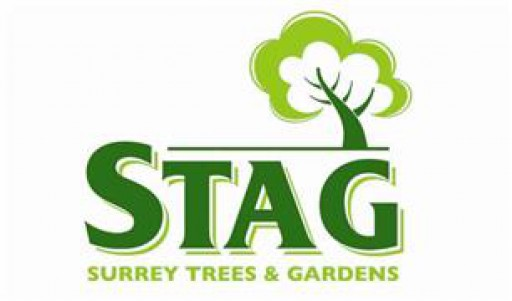 Surrey Trees & Gardens Ltd