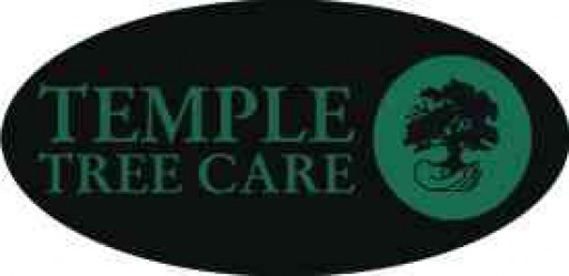 Temple Tree Care