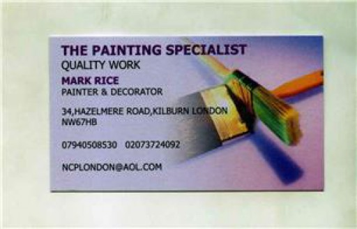 The Painting Specialist