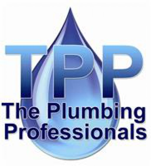 The Plumbing Professionals