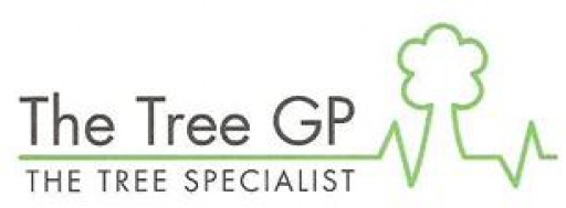 The Tree GP Ltd
