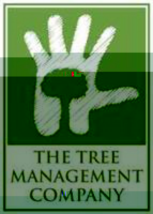 The Tree Management Company