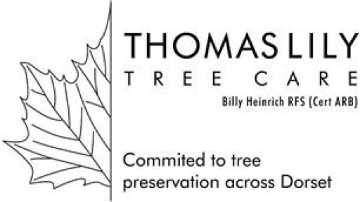 Thomas Lily Tree Care
