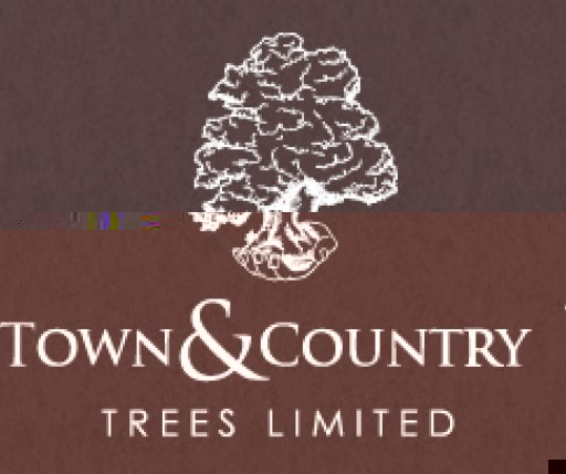 Town & Country Trees Ltd