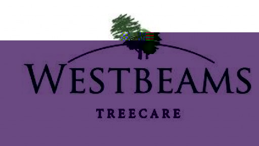 Westbeams Tree Care
