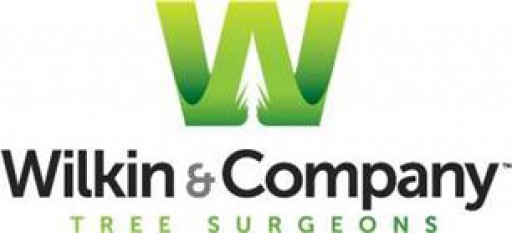 Wilkin And Company Tree Surgeons